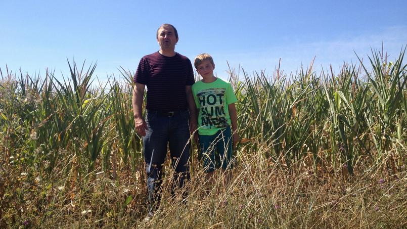 Philippe Grégoire et son fils devant une parcelle de maïs non irriguée de son exploitation dans le Layon au sud d'Angers.