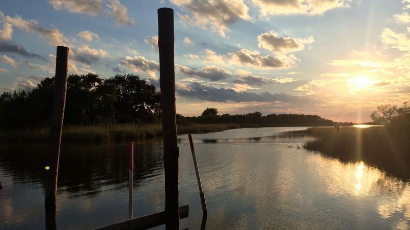 L'île de Jean Charles, en Louisiane.