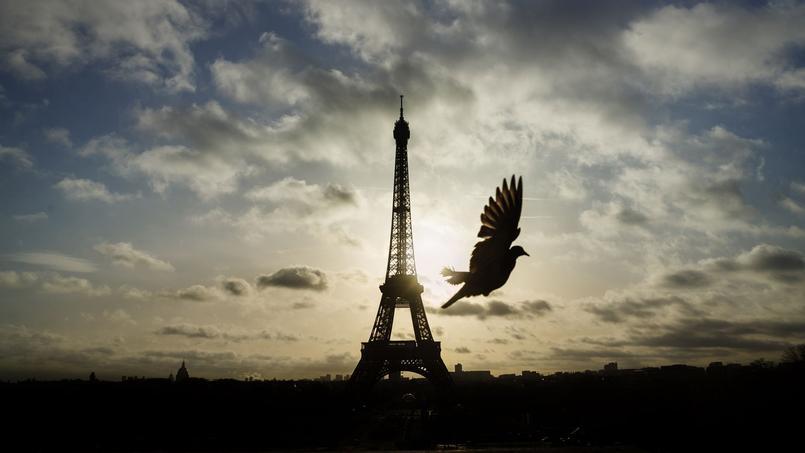 Sept sites, tous localisés en Ile-de-France, sont candidats pour accueillir cette exposition.