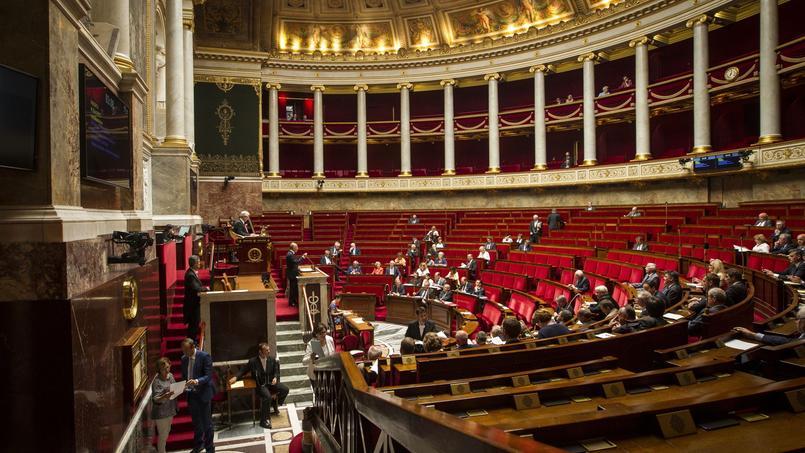 Le délit d'entrave numérique à l'IVG est discuté jeudi 1er décembre 2016 à l'Assemblée.