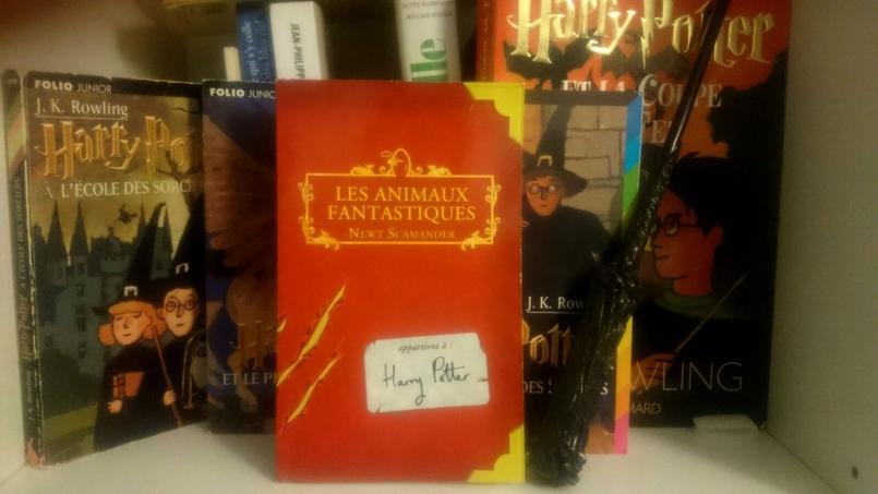 La première édition du livre Les Animaux fantastiques publié en 2001.