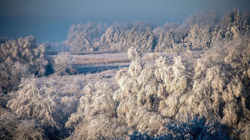 Une perturbation neigeuse vient se rajouter aux plaques de verglas de mardi sur le nord-est du pays.