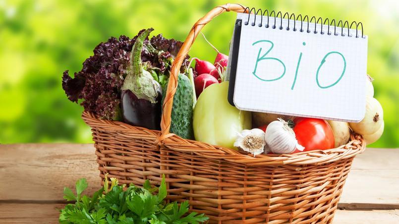 Le jardinage bio n 39 est pas meilleur pour la sant for Meilleur site jardinage
