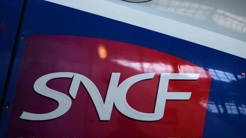 La SNCF prendra en charge la commande des quinze TGV que le gouvernement avait décider de passer en direct pour un montant de 480 millions d'euros.