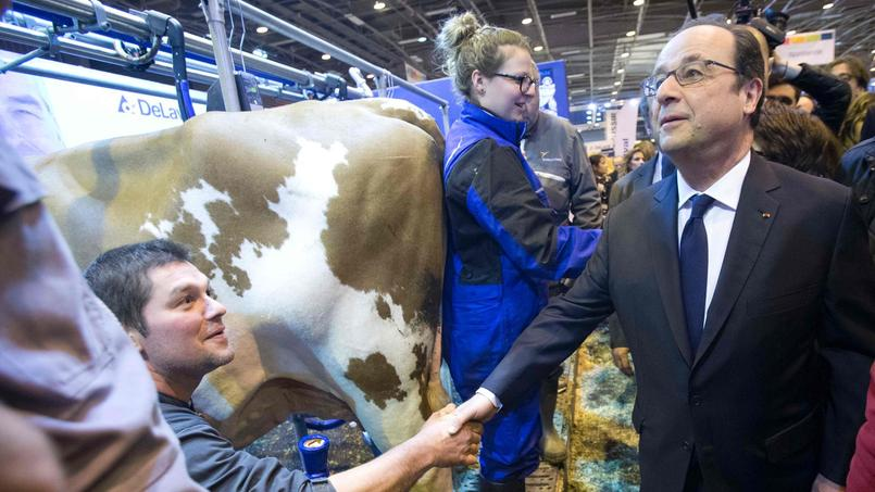 Le plan d'aide aux exploitations prolongé de trois mois (Hollande) — Agriculture