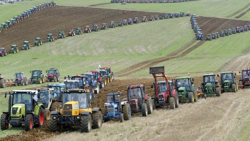 Les agriculteurs se regroupent pour embaucher des ouvriers agricoles qui partagent leur temps entre différentes exploitations.