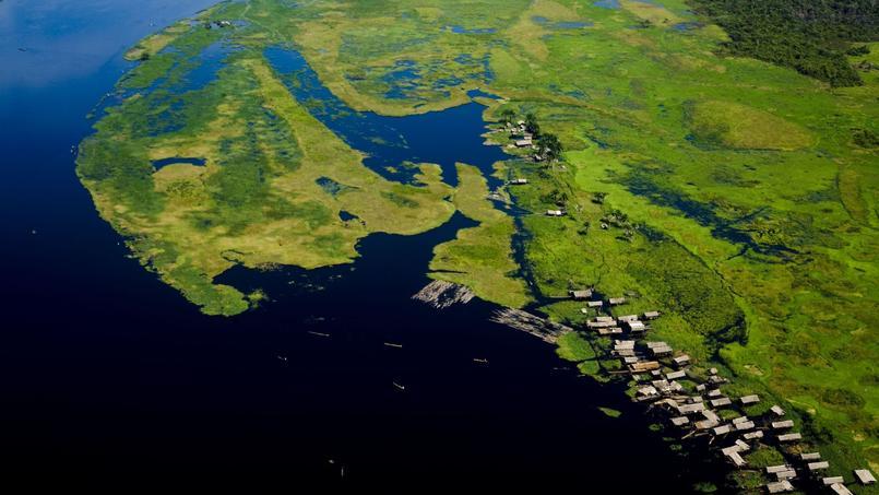 Avec ses 2millions de kilomètres carrés de forêts, qui représentent 10% de la biodiversité mondiale, le bassin du Congo est, derrière l'Amazonie, le deuxième poumon écologique de la planète.