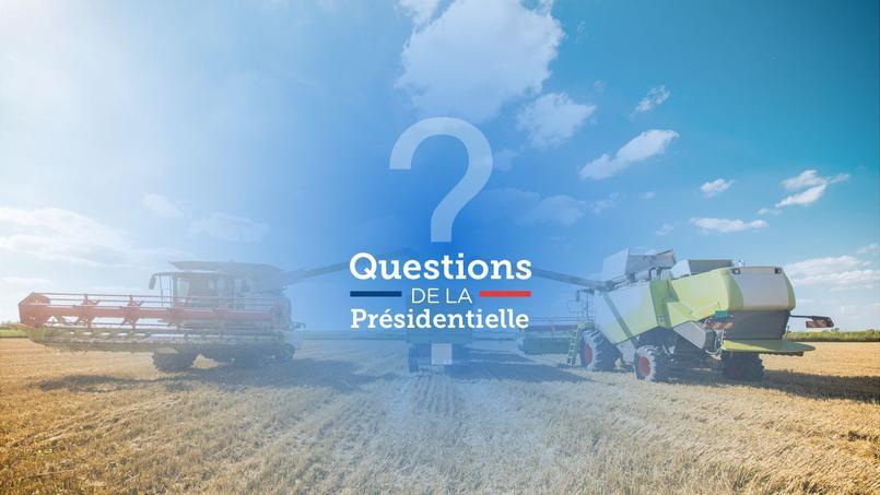 La France est le premier pays bénéficiaire de la politique agricole commune.