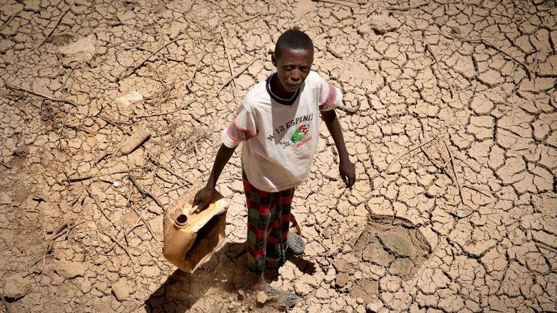 L'Organisation mondiale de la santé estime que 6,2 millions de somaliens ont besoin d'une aide d'urgence.