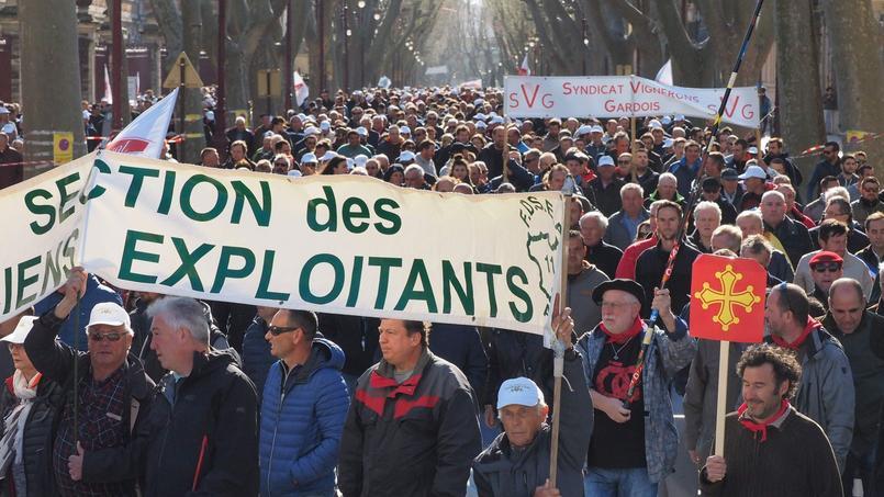 Les vignerons manifestaient hier à Narbonne pour interpeller les candidats à l'élection présidentielle.
