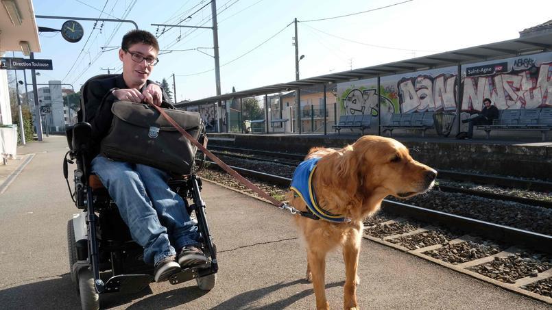 Présidentielle : où est passé le handicap ?