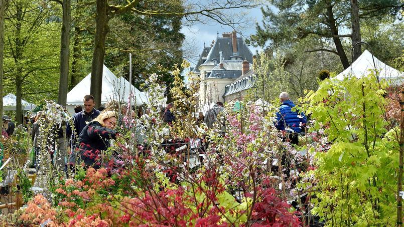 Le parfum des plantes est le thème de la nouvelle édition de la fête des plantes de printemps.
