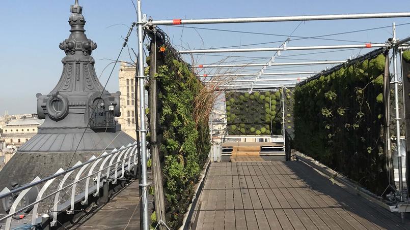 Le jardin est perché aux septième et huitième étages du BHV Marais.
