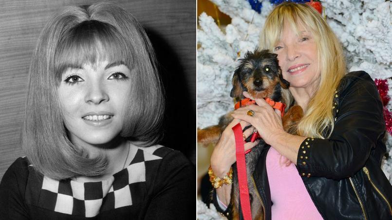 La chanteuse Annie Philippe vient de publier ses mémoires au Cherche midi «J'aurais pu être la marquise des anges.