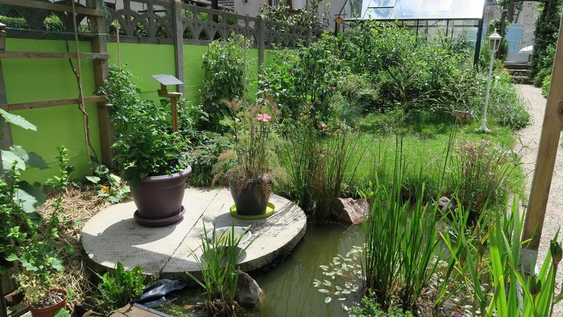Le jardin de Joseph, à Sotteville-Lès-Rouen (Seine-Maritime).