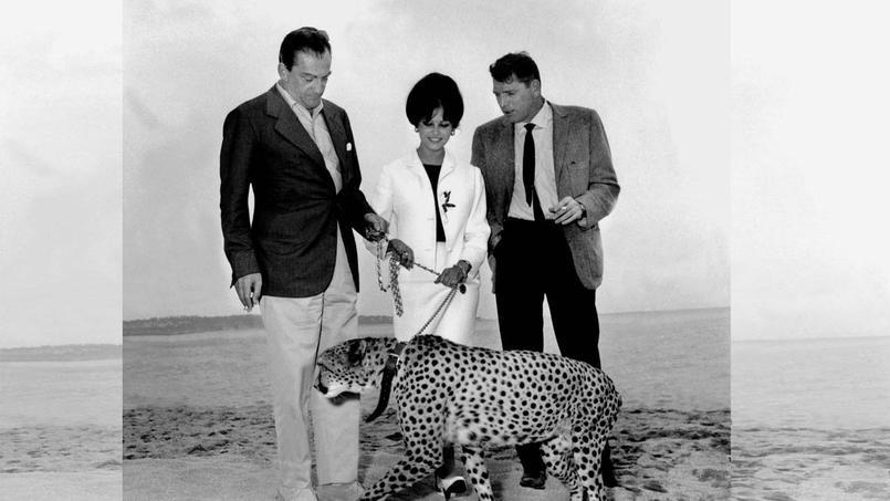 Claudia Cardinale, Burt Lancaster et Luchino Visconti prennent la pose au côté d'un guépard prêté par un cirque sur la plage à Cannes.