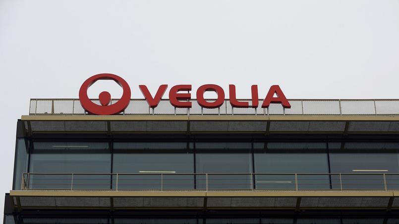 Comme Veolia, les multinationales françaises investissent le plus souvent le secteur des services à l'étranger, mais aussi l'industrie. Elles embauchent plus de la moitié de leurs salariés hors de France.