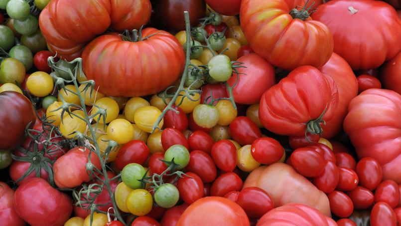 L'Italie importe de grandes quantités de tomates de Chine, de Californie ou encore d'Espagne. Après avoir été transformées, elles sont conditionnées dans des conserves portant la mention «produites en Italie».