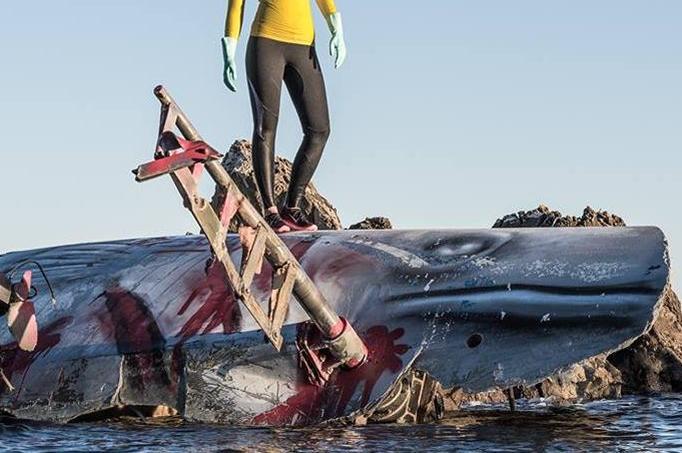 L'artiste Pleks a transformé une épave de voilier en une œuvre macabre et engagée.