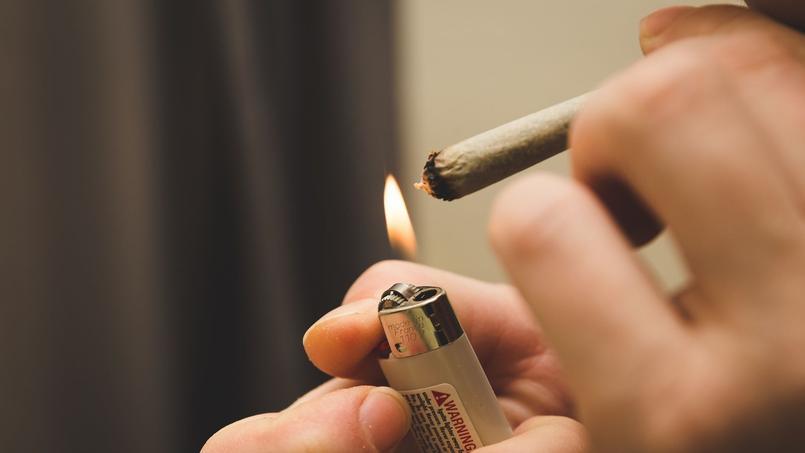 Les français figurent parmi les plus gros consommateurs de cannabis en Europe
