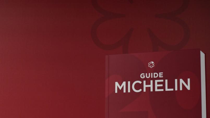 Prise de participation dans RPWA — Michelin