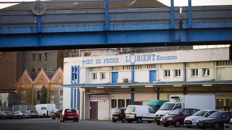 Trois fœtus congelés retrouvés à Lorient, l'un dans un bateau de