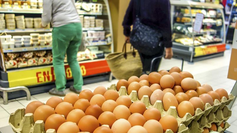 De nouveaux établissements concernés par le scandale des œufs contaminés en France
