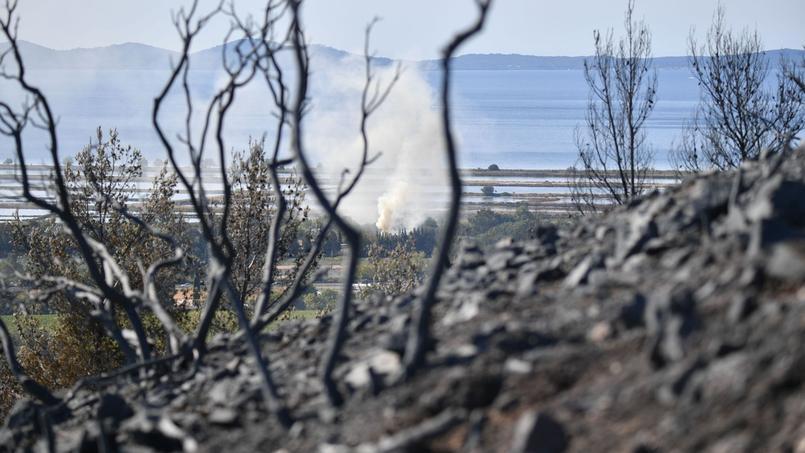 Incendie dans le Var: 200 hectares parcourus et une habitation détruite