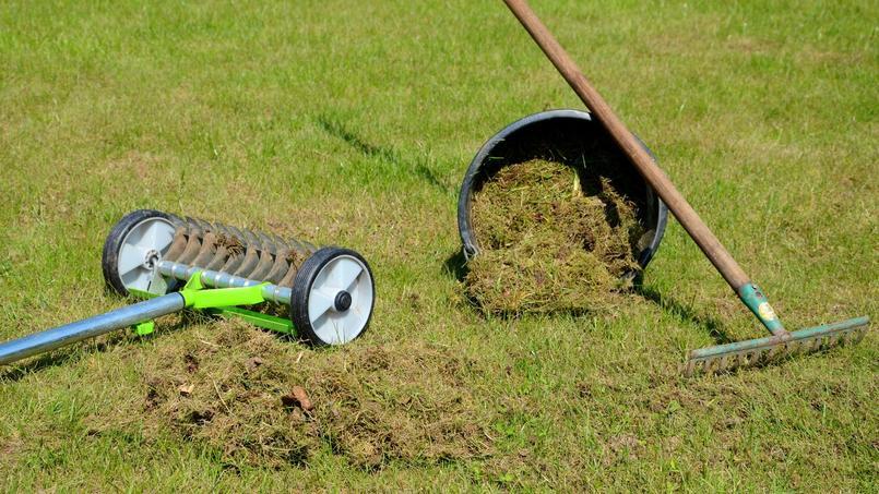 Le scarificateur permet de retirer le feutre végétal et la mousse qui asphyxie l'herbe.
