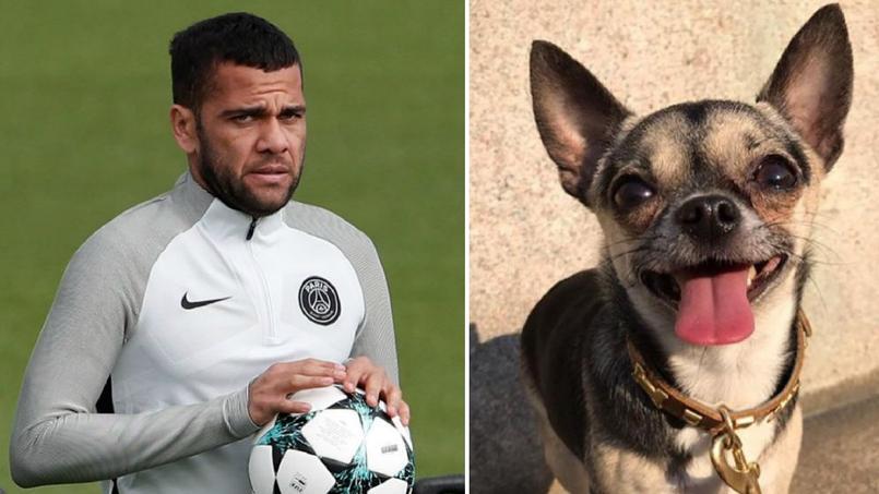Alves lance un appel sur les réseaux sociaux pour retrouver son chien