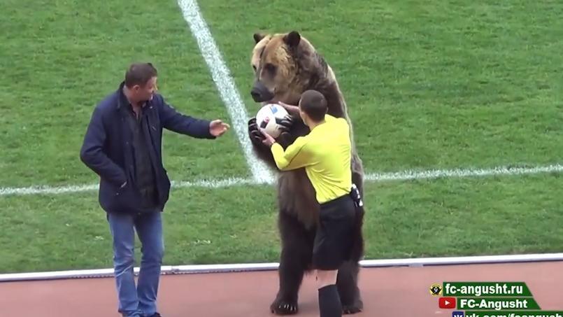 Un ours donne le coup d'envoi d'un match de football en Russie