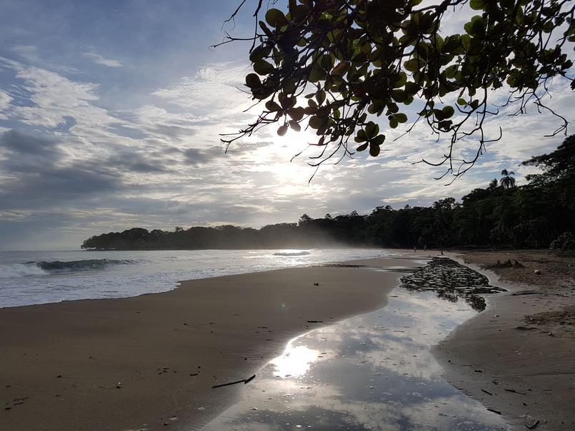 Une plage de la côte Caraïbe, Cocles Beach, bordée par la forêt tropicale.