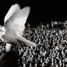19 janvier, 15 heures, Istanbul, Turquie, 2007Funérailles du journaliste arménien Hrant Dink, assassiné par un ultranationaliste. Cette photo fut prise depuis le bâtiment du journal Agos, qu'il avait fondé et sur le seuil duquel il fut assassiné. Quelques jours avant sa mort, il écrivait dans un article : « Oui, je peux me voir dans l'inquiétude et l'angoisse d'une colombe, mais je sais que dans ce pays les gens ne touchent pas aux colombes… »