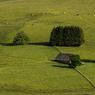 Longtemps considéré comme un « lieu d'horreur et de profonde solitude», ce territoire hors du temps a su conserver une identité forte et préserver sa nature. Ici entre les villages de Saint-Urcize et Aubrac.