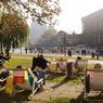 Aux beaux jours, le restaurant Ampelmann sort les transats pour profiter d'un rayon de soleil et d'un café face à l'île des musées.