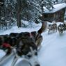 Après un court apprentissage, on se prend vite pour ces coureurs des bois qui sillonnaient le pays en quête de fourrures.