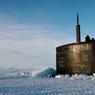 ICEBERG D'ACIER.Du sous-marin nucléaire d'attaque (SNA) américain USS Hampton, seul dépasse de l'épaisse banquise l'imposant kiosque d'acier. En exercice en Alaska, dans les eaux glacées de l'océan Arctique, ce bâtiment de la classe Los Angeles a fait brièvement surface avant de replonger quelques minutes plus tard et de disparaître sous la mer. D'une longueur de 110,3 m, pesant plus de 7000 tonnes, ce SNA qui embarque 12 officiers et 98 hommes d'équipage est un habitué des missions au long cours. Rattaché à la base navale de San Diego, il fait partie de la force de dissuasion américaine dans la zone Pacifique. Armé de 12 missiles Tomahawk, il est particulièrement adapté à la défense et à l'attaque de navires de surface.