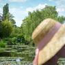 Le jardin d'eau est le célèbre bassin aux nymphéas qui servit de modèle à l'artiste.