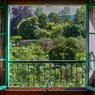 Tous les matins, Monet contemplait son jardin depuis la fenêtre de sa chambre située au premier étage de sa maison de Giverny dans laquelle il séjourna 43 ans, de 1883, jusqu'à son décès en 1926.
