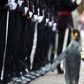 UN MANCHOT VRAIMENT ROYAL.Troisième du nom et de sa lignée, ce manchot royal hébergé par le zoo d'Edimbourg est la mascotte du régiment de la Garde royale de Norvège qu'il feint ici de passer en revue, comme à chaque fois que ce bataillon se rend dans la capitale écossaise afin d'y participer à un festival de fanfares militaires. Nils Olav, ainsi baptisé en 1961 par un certain lieutenant Nils qui tenait à rendre hommage à son souverain Olav V, en est, avec ses deux prédécesseurs, à son huitième défilé; et, à chaque fois, il y monte en grade et en noblesse: vice-caporal et chevalier dès 1961, Nils Olav III a été promu général de brigade et «sir» le 22août dernier, en présence du roi Harald V de Norvège.