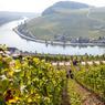 Le charme s'exprime au Luxembourg dans les paysages, chapelets de châteaux féodaux qui couronnent les cimes des Ardennes, routes buissonnières qui parcourent la campagne et vignes généreuses qui tapissent les monts rieurs de la Moselle ...