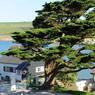 Burg Island n'est reliée à la côte que par une bande de sable recouverte par la mer plusieurs fois par jour.