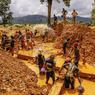 OR MAUDIT.Sous une chaleur étouffante, dans la boue collante et les émanations pestilentielles, ces mineurs illégaux s'épuisent jour après jour dans une folle quête : trouver de l'or. Au Ghana, la ruée vers ce précieux métal ne cesse de provoquer des catastrophes. Chaque semaine ou presque, des hommes se tuent à la tâche ou se blessent gravement pour un salaire de misère. La terre, retournée et souillée, est polluée pour de longues années. Souvent envoyés dans les carrières par leur famille pour réussir à payer l'école, des milliers d'enfants sont exploités sans vergogne. Sans aucune protection, ils sont exposés à des doses massives de mercure qui permet de séparer l'or des autres minerais, mais qui attaque le système nerveux. Dans l'indifférence générale.