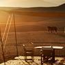 Notre voyage se termine. Nous nous réveillons avec ce soleil à couper le souffle, on inspire à fond, on expire cet air primitif qui génère en nous un plaisir simple et intense...