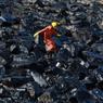 MARÉE NOIRE. Un membre d'une équipe d'intervention inspecte les dégâts causés par la collision de deux tankers à la sortie du port d'Ennore près de Chennai, en Inde. L'accident n'a pas fait de victime, les navires ne sont pas gravement endommagés mais près de 40 tonnes de pétrole se sont déversées sur la côte.