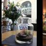 Ambiance précieuse avec les terrariums de chez Girls & Roses, Paris.