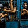 FORÇATS DU IIIe MILLÉNAIRE. Pris en octobre 2016 dans un commissariat de Manille, aux Philippines, où s'entassent les présumés dealers de drogue pourchassés   quand ils ne sont pas carrément abattus dans la rue   sur ordre du président Rodrigo Duterte, ce cliché du photographe australien Daniel Berehulak fait partie du portfolio qui a remporté le premier prix de la catégorie « Reportages d'actualités » du concours World Press, dont le palmarès a été proclamé le 13 février. Plus de 5000 photographes avaient soumis leur travail, sous la forme d'environ 80000 images. Quarante-six sujets ont été primés, dans seize catégories, au cours de cette 60e édition du plus prestigieux des concours photographiques.