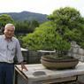 Keiji Kandaka, maître bonsaï et propriétaire d'une pépinière de bonsaïs à Kinashi (Japon), pose à côté d'un pin ayant appartenu à l'ancien premier ministre Japonais Ohkuma Shigenobu (1838-1922).