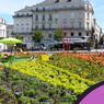 Angers est l'une des huit communes de France à avoir reçu la «fleur d'or 2016».