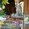 Perdu au milieu de la jungle, le temple de Batukaru, reflète le caractère de ce monde à part baigné de spiritualité ...